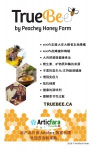 Truebee-flyer-design-Chinese-2016-01-21-add-copy-right-pdf-page-001-182x300