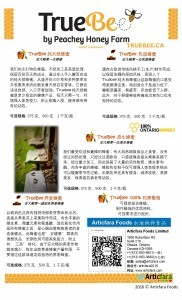 Truebee-flyer-design-Chinese-2016-01-21-add-copy-right-pdf-page-002-182x300